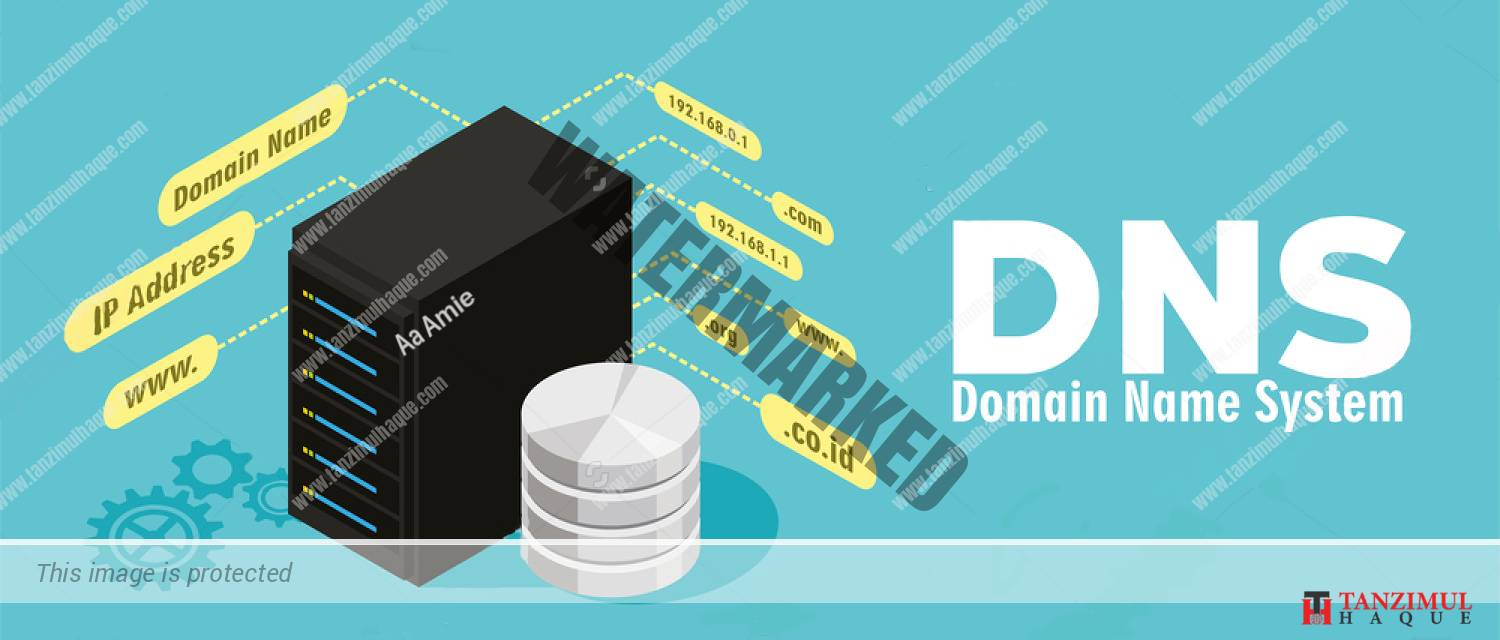 What is Domain Name System and how does it work